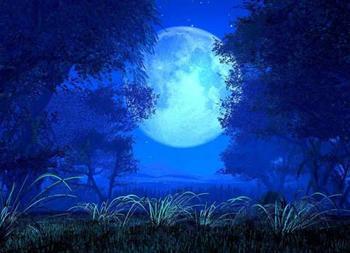 月光是你的吗?